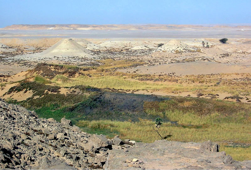 Figure 1 Kurkur Oasis, main wadi, point of entry for major pharaonic route from the northeast.