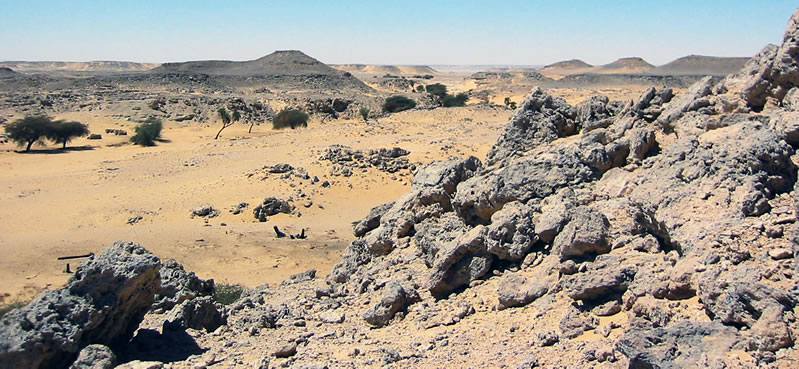 Figure 5 A view up the Northwest Wadi, Kurkur Oasis.