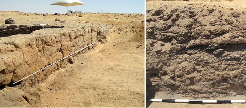 Figure 4 (left) The cast wall of the excavated portion of the Umm Mawagir bakery. Below the white line is the ash that accumulated prior to the construction of the east wall of the bakery (three courses of bricks above the white line). Right photo, excavated section through the debris removed from the bakery during its original operation. The section shows layers of ash and sherds that were dumped here, south of the bakery, to take advantage of a predominant northern wind