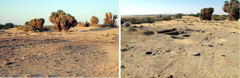 Figure 1 View of the northern portion of the Umm Mawagir site before and after excavation (looking southwest).