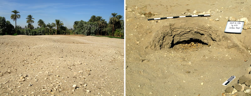 Figure 1 (left) view of site M08-09/S1. Figure 2, exposed mud-brick arch from a tomb at M08-09/S1.