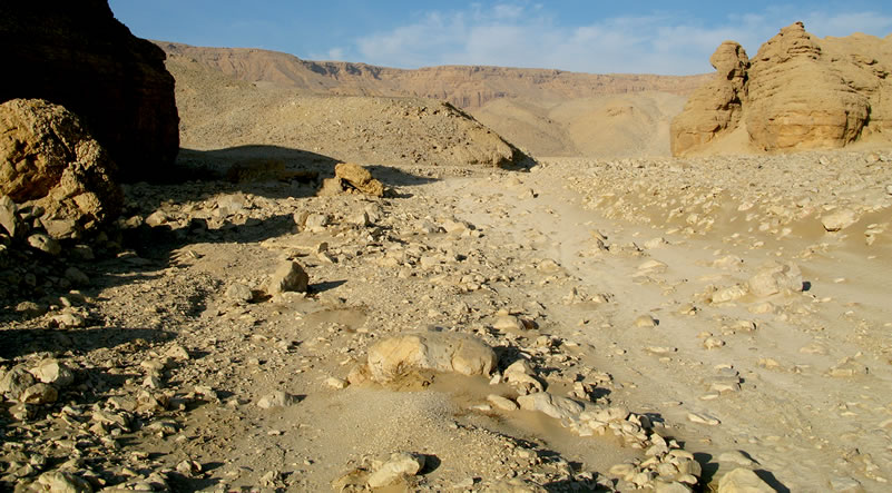 Figure 1 A portion of the Wadi Arqub al-Baghla.